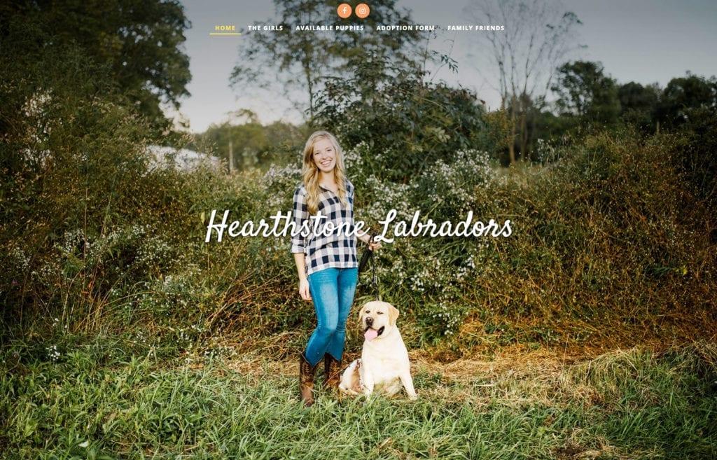 Hearthstone Labrador Retreiver Dog Website Designer Pixelvine
